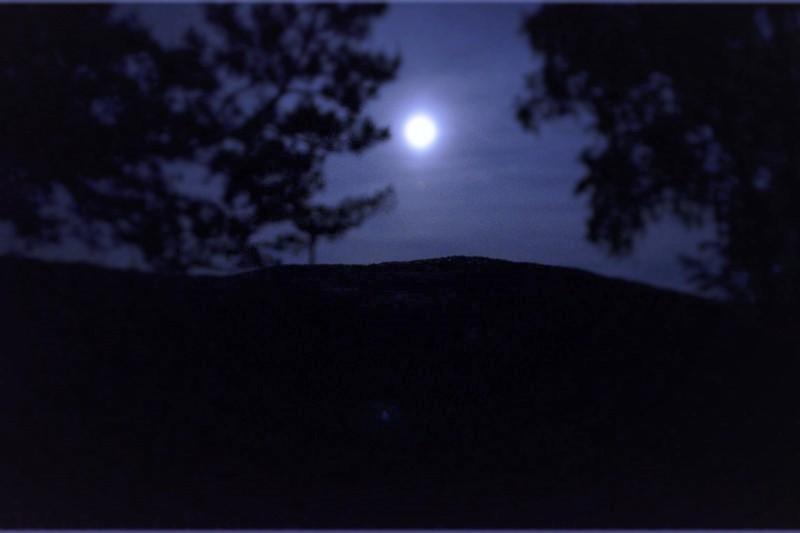 Nachtwanderung Sächsische Schweiz natuerlich wolf